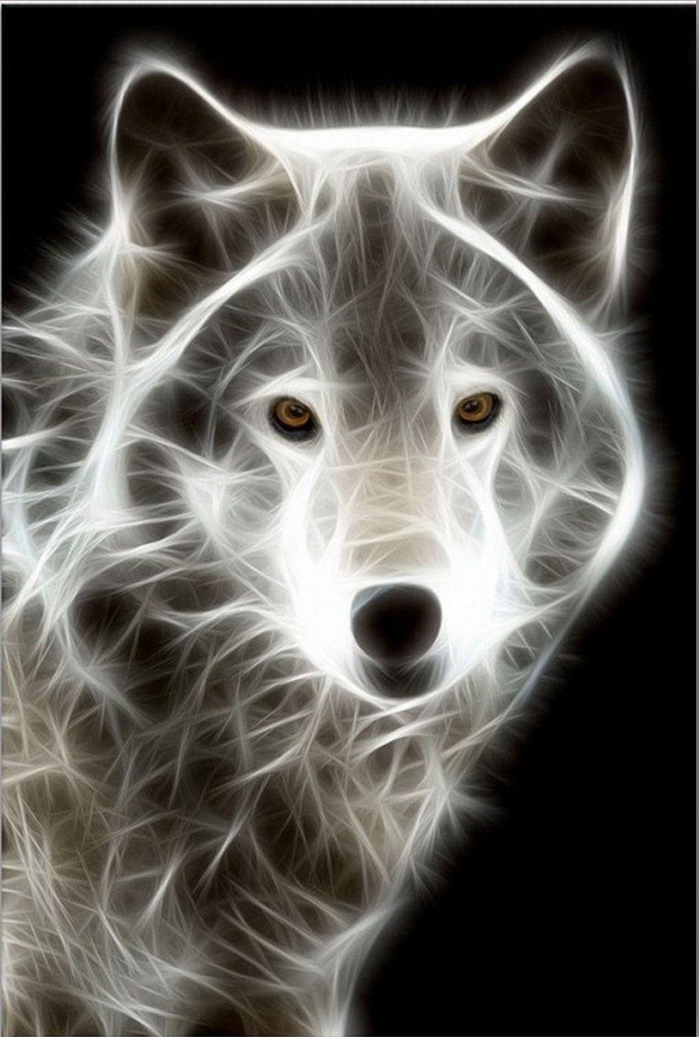 Amazon Com White Wolf Amazingly Canvas Wall Art Print 5 Stars Gift Startonight 23 62 X 35 43 In Music Themed Gif Original Art Painting White Wolf Animal Art