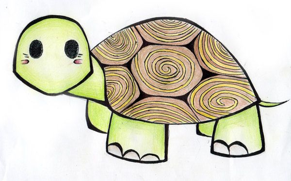 Cute Turtle Drawing Tumblr Into Their Turtle Shell Turtle