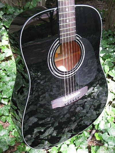 Zager Ez Play Zad20 Acoustic Black Lacquer Pictures Guitar Guitar Reviews Custom Guitars