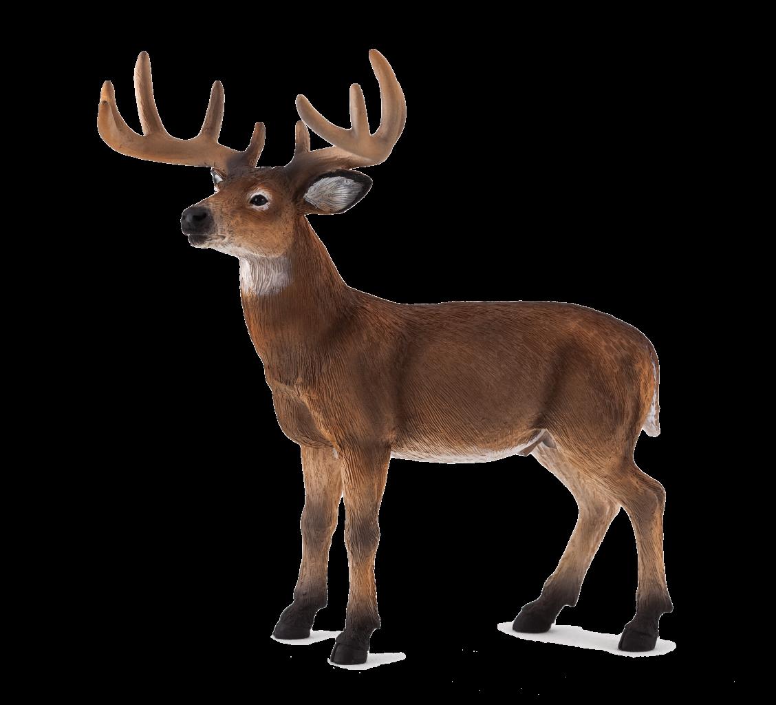 Mojo White Tailed Buck Whitetail Deer Wildlife Toys Animal Planet