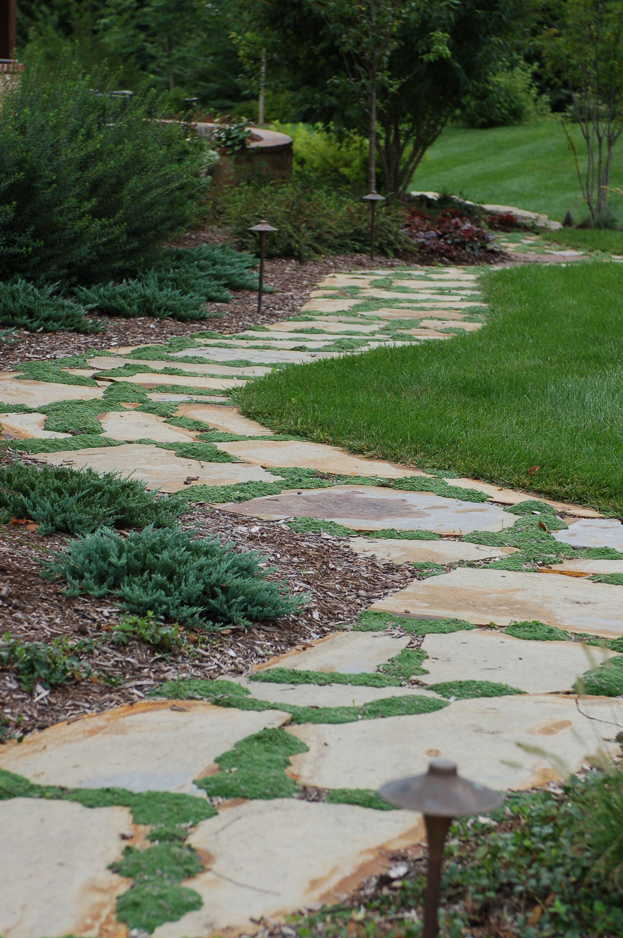 Flagstone pathway with thyme #TopekaLandscape | Walkways & Paths ...