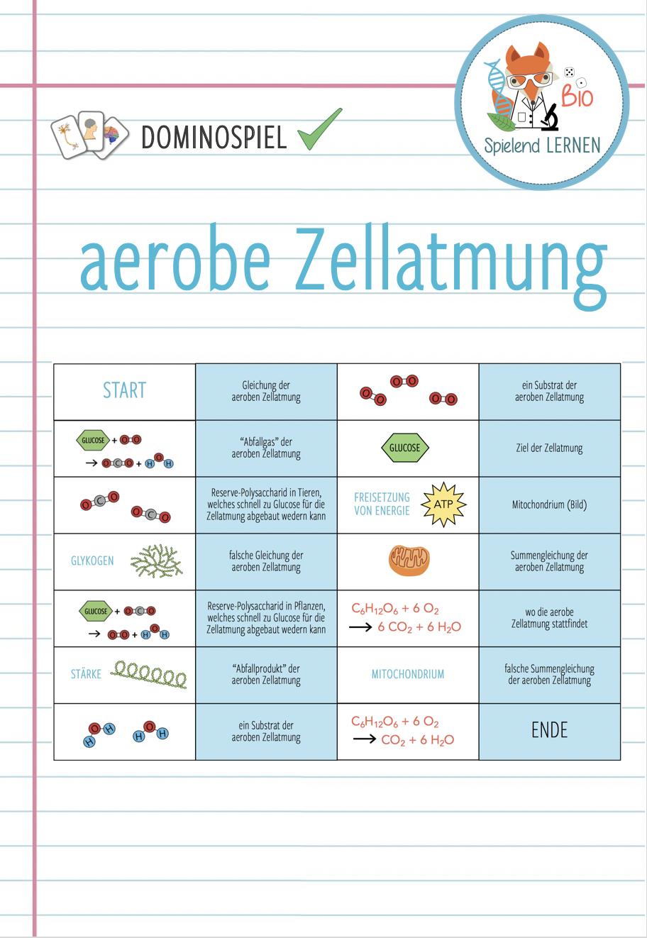 Einführung in die Zellatmung   Domino Spiel – Unterrichtsmaterial ...