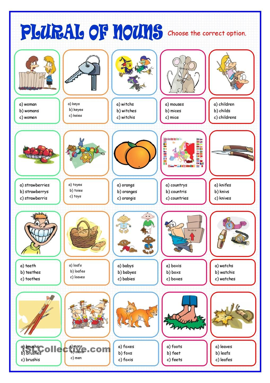 Plural of Nouns | English class | Pinterest | Plural nouns, Nouns ...
