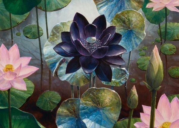 Black Lotus By Steven Belledin Lotus Flower Art Lotus Artwork Watercolor Lotus