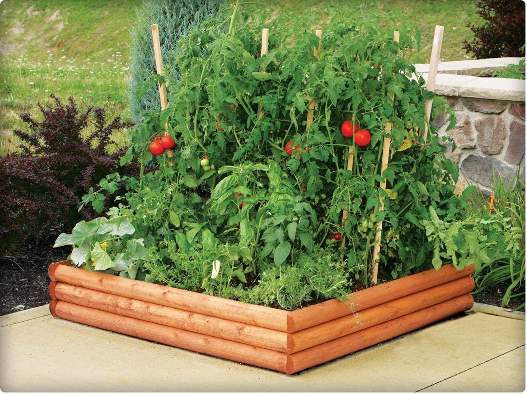 Raised Vegetable Garden | How To Create A Dig Free Garden | Big City Gardens