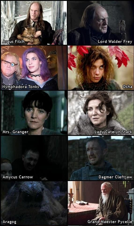 Potter Vs Game Of Thrones Interesting Says Thaddeus Of Www Lady Ellen Com Harry Potter Games Game Of Thrones Game Of Thrones Funny