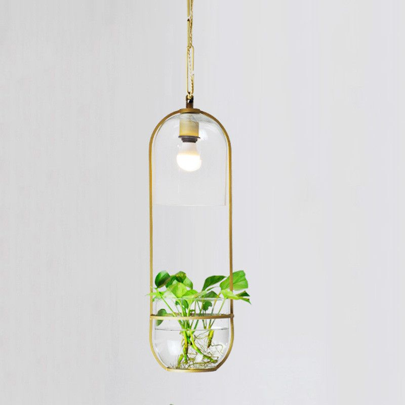 Hanging Plant Vase Pendant Light In Brass Hanging Glass Vase Hanging Plants Lamp Planters