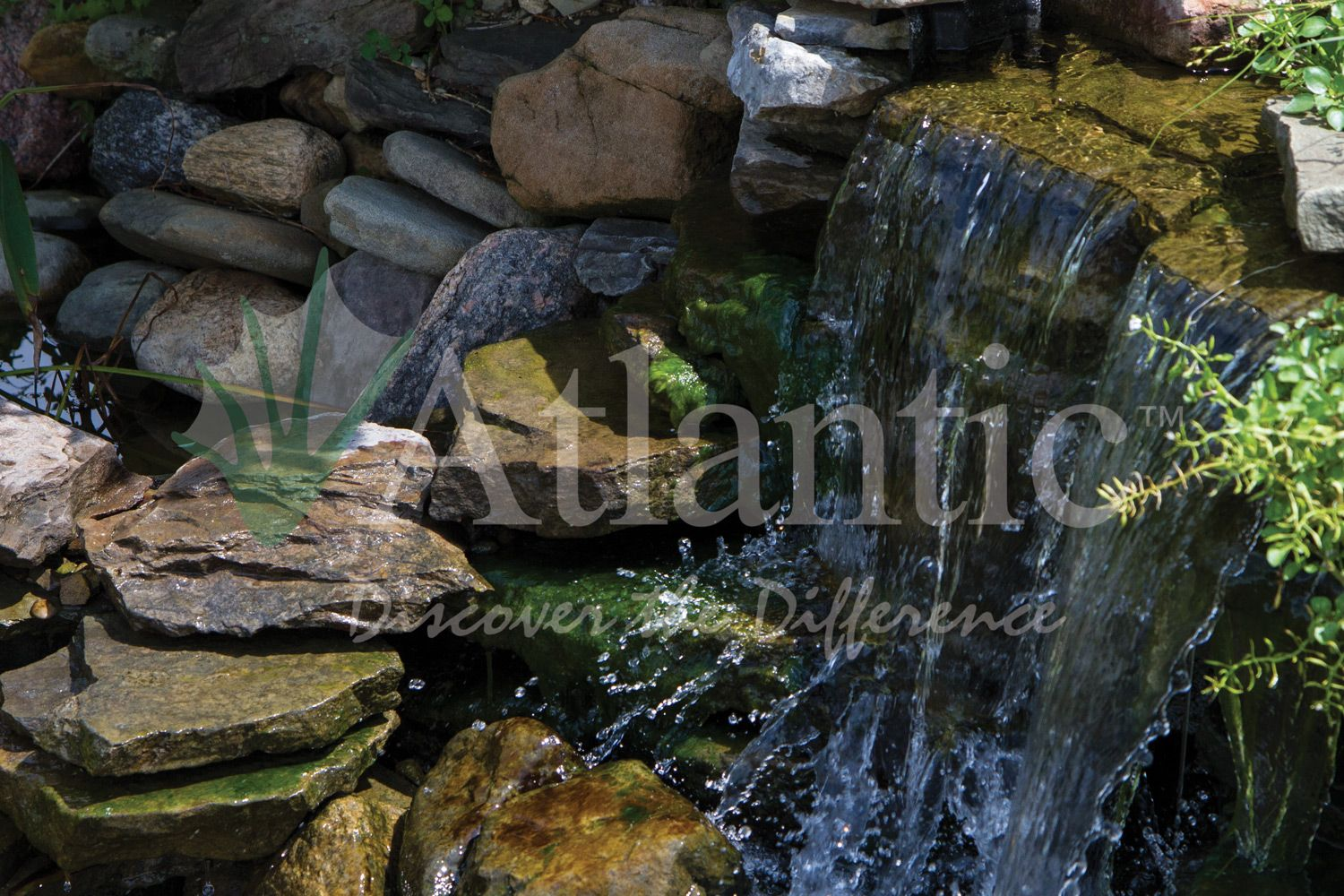 backyard landscape need a lift ever consider a water feature
