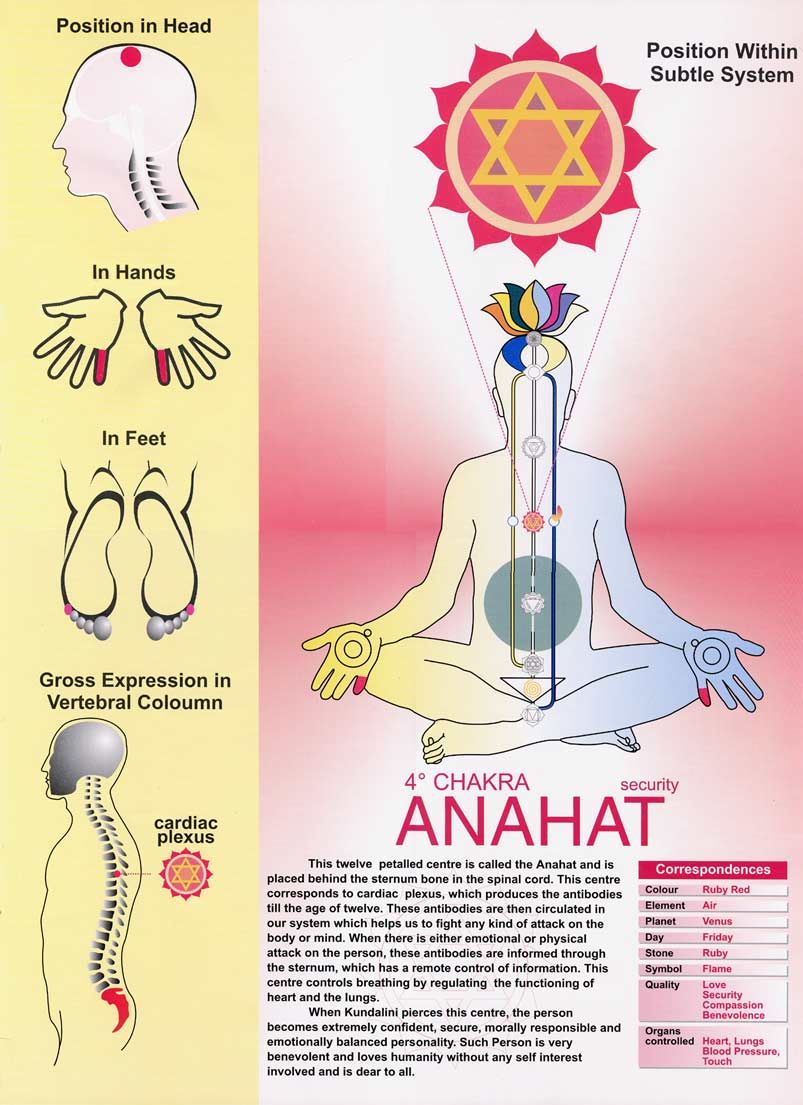 4th Chakra -Heart-Green or Pink Red Loved & pinned by http://www.shivohamyoga.nl/ #yoga #chakra