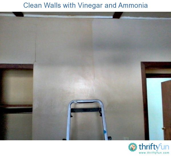 Clean Walls With Vinegar And Ammonia Cate Cleaning