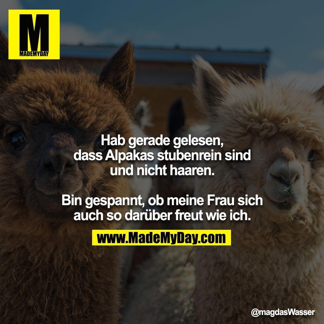 Bild Von Britt Samson Auf Deutsch Witze Spruche
