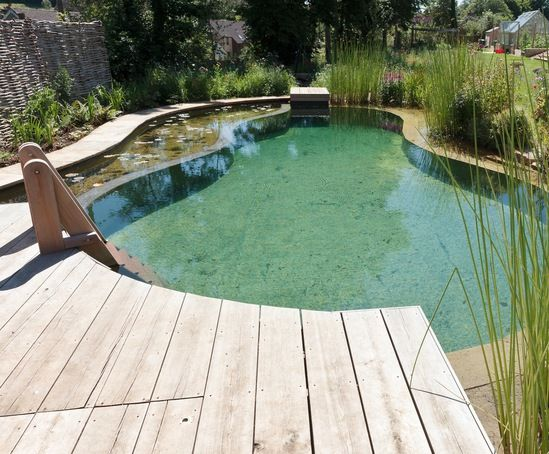 Natural swimming pond private garden gloucestershire for Garden pool facebook