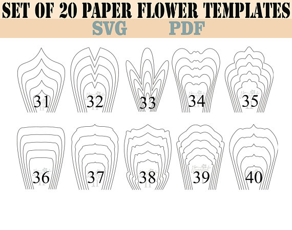 bundle 2-All 20 PDF  SVG Paper Flower Template giant paper flower