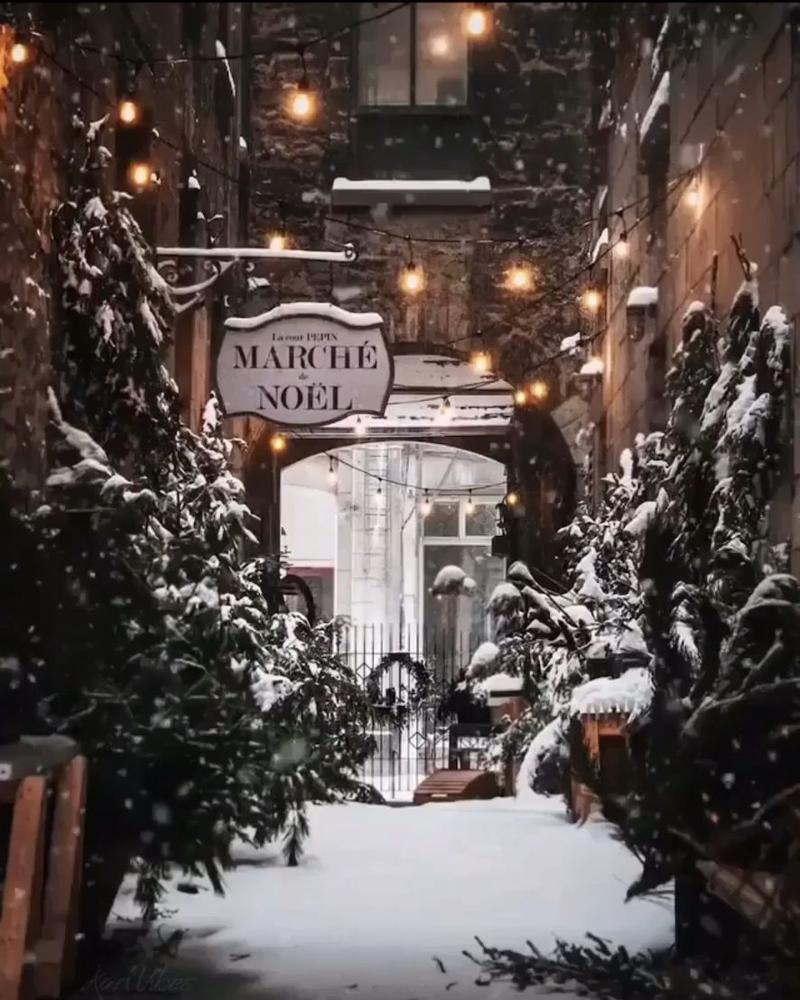 The most magical hidden Christmas alley in Old Town, Montreal! #winter #winterwedding #snow #nyc #montréal #whitechristmas #christmas #christmasdecor #christmastree #christmasideas #holiday #holidaydecor