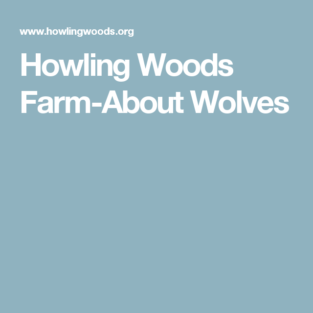 Howling Woods Farm About Wolves With Images Wolf Wood Farm