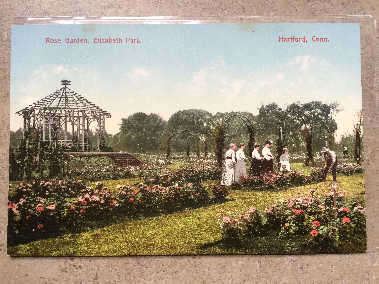 This Item Is Unavailable Vintage Roses Photo Postcards Vintage Postcard