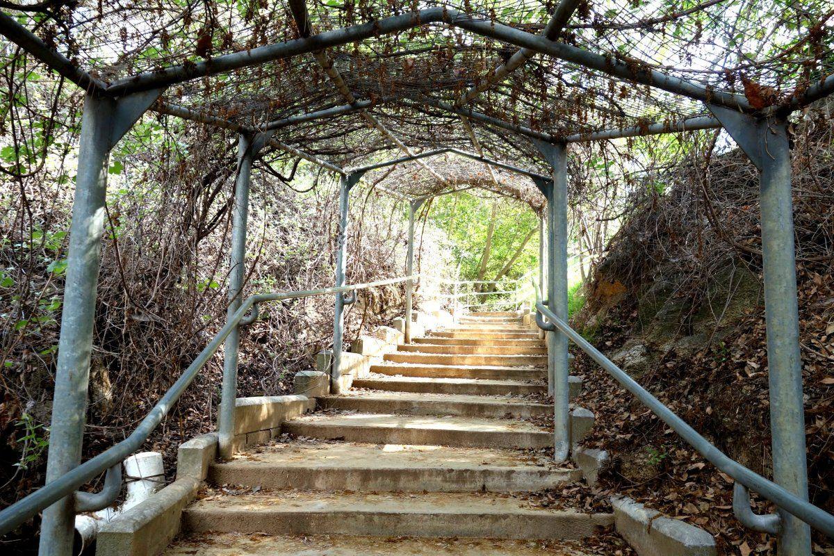 Genial UCR Botanical Gardens