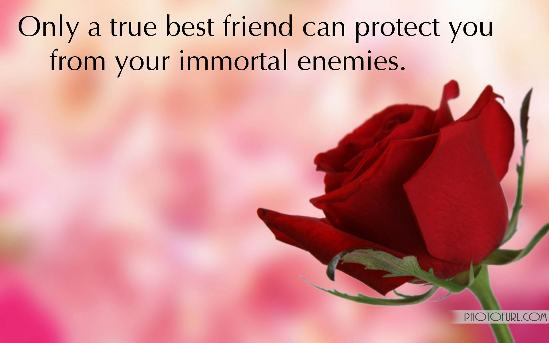 New images of love n friendship Friendship Wallpapers With Quotes Free Wallpapers pertaining to