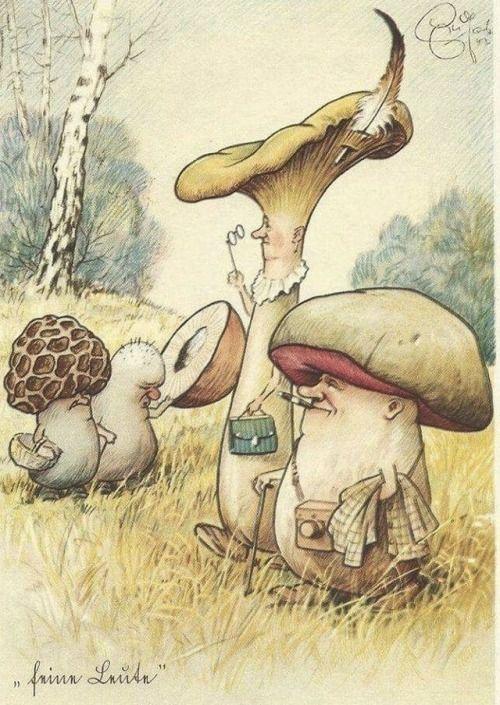Прикольные грибные картинки, друзей картинки приколы