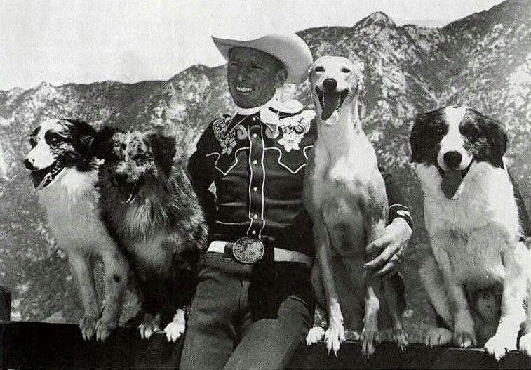 Vintage Dog Training And Performance Jay Sisler Metafilter Vintage Dog Australian Shepherd Dogs Australian Shepherd