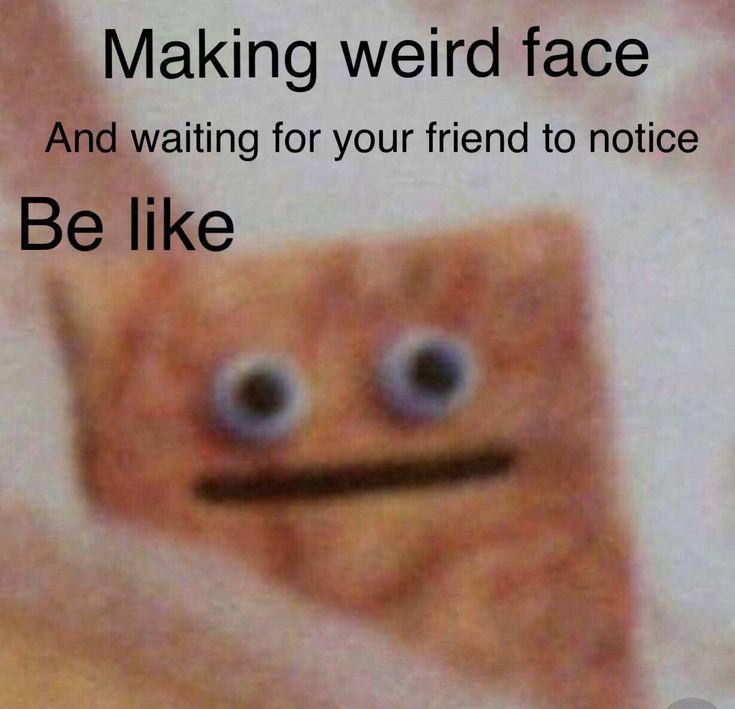 999 Zufallige Lustige Fotos Und Memes Lustigebilder Memes Funny Friends Funny Funny Relatable Memes Funny Memes