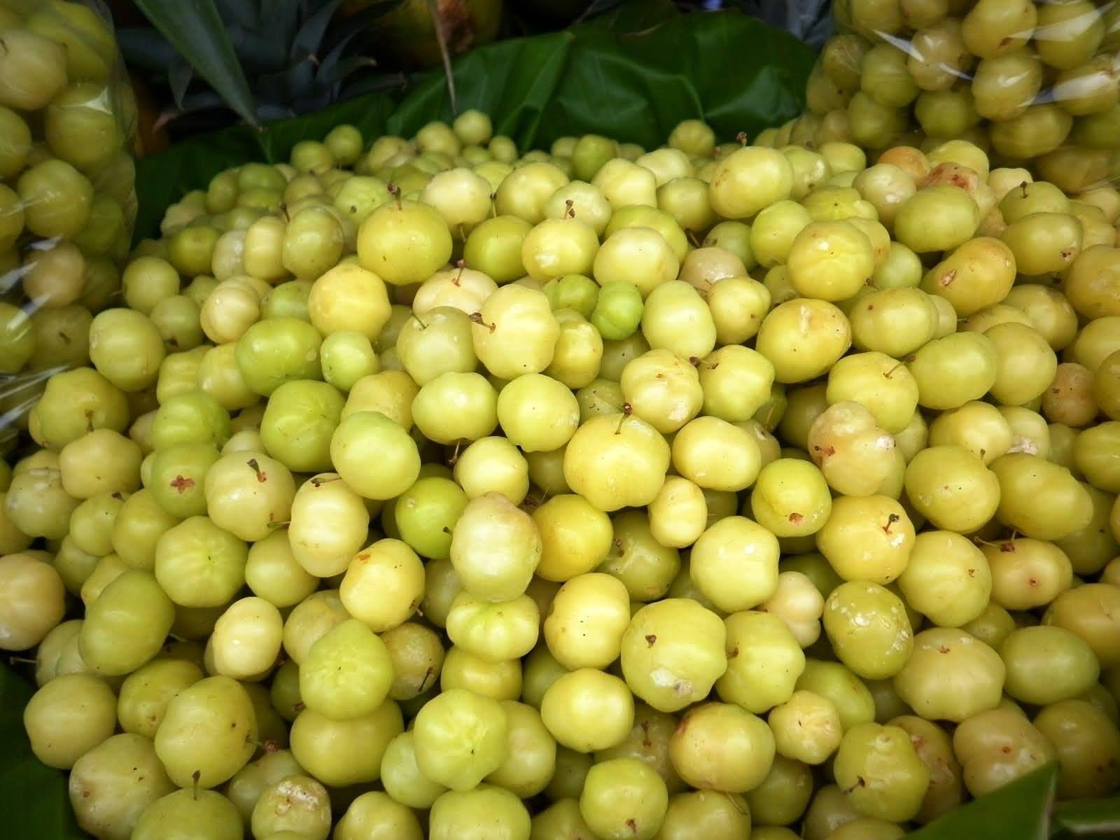 Pin On Salvadoran Fruits