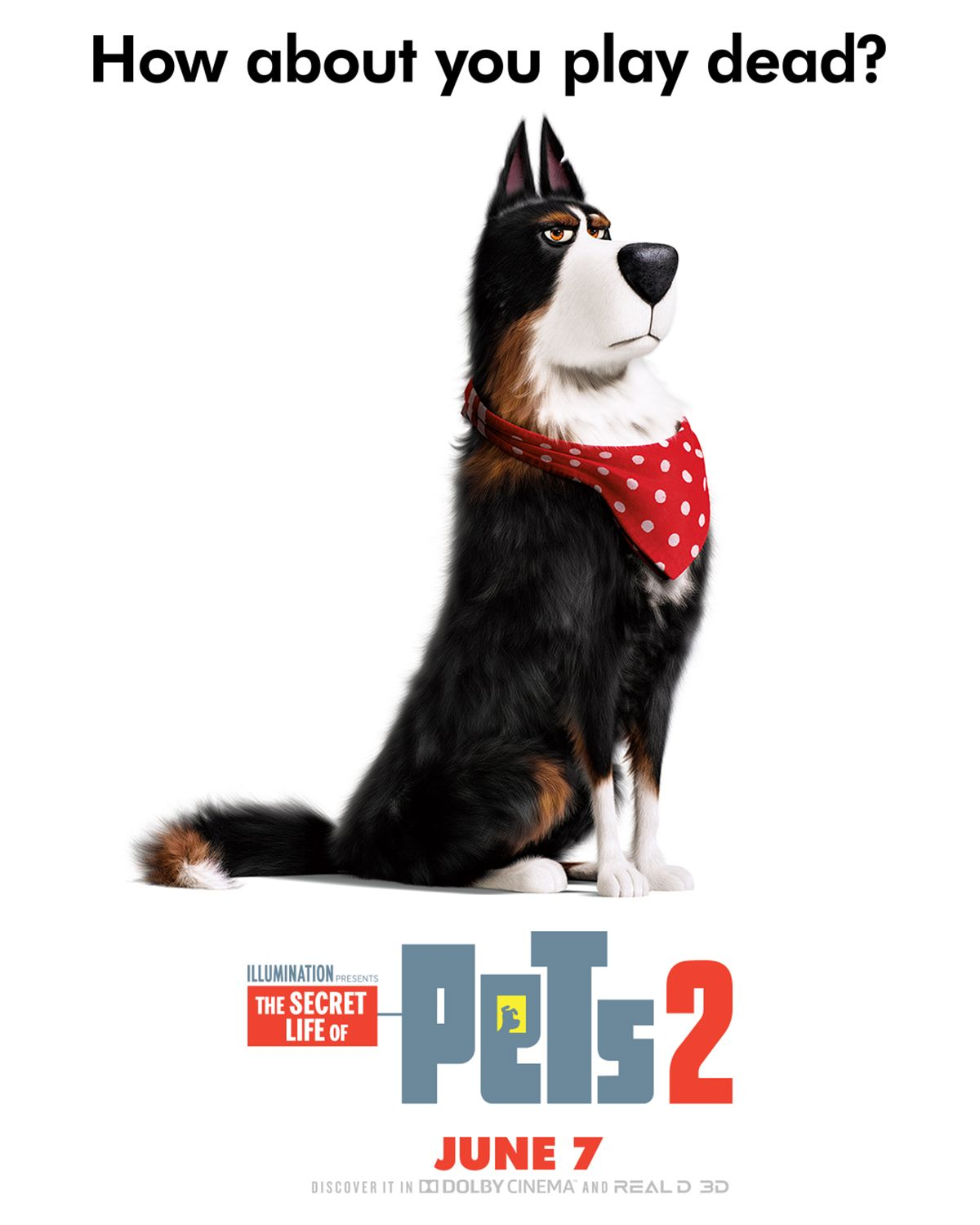 Harrison Ford Is Rooster The Pets Return This Summer In The New Movie The Secret Life Of Pets 2 Coming To Theaters June Secret Life Of Pets Pets Secret Life