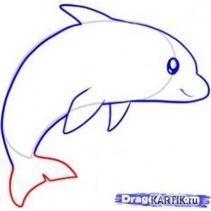картинки для срисовки дельфины