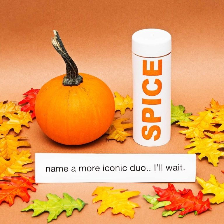 "Meme | I went with ""pumpkin spice"" because this is the most iconic of duos. It's also the easiest pumpkin decorating idea because it requires no actual pumpkin decorating."