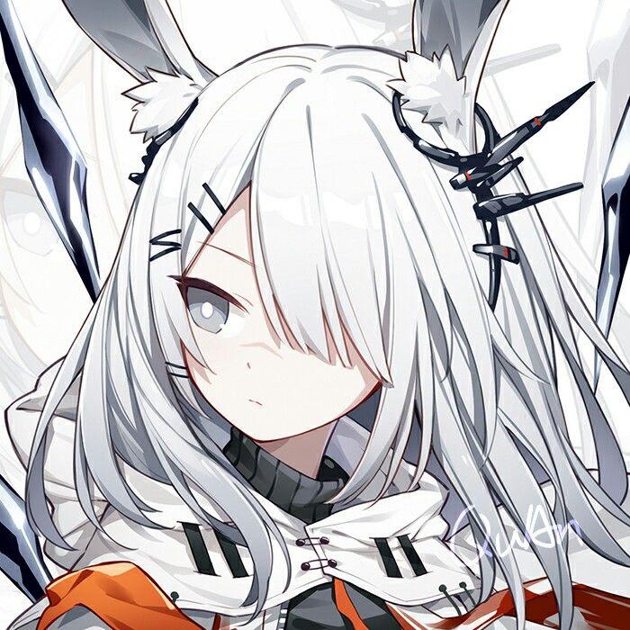 Pin By Irynutza Gm On Other Chibi Anime Wolf Girl Aesthetic Anime Anime Art Girl