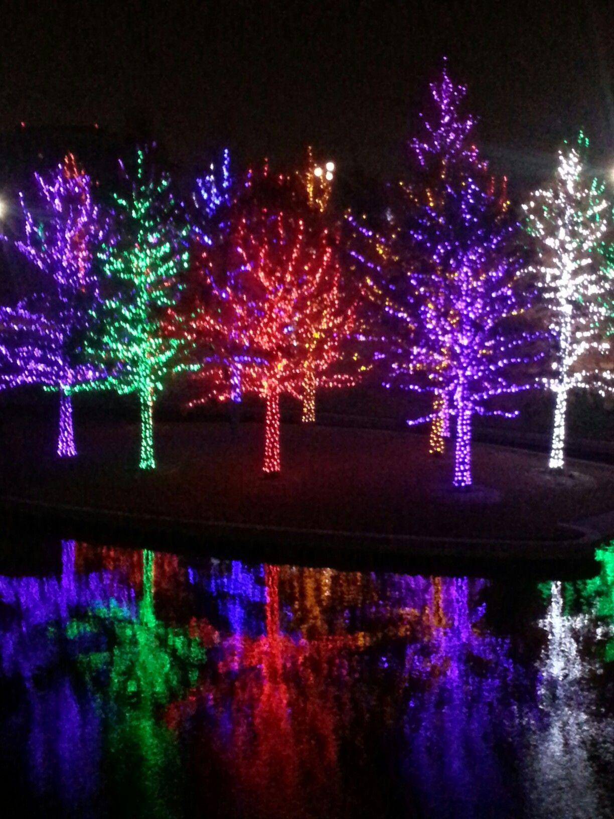 Christmas Lights, Dallas