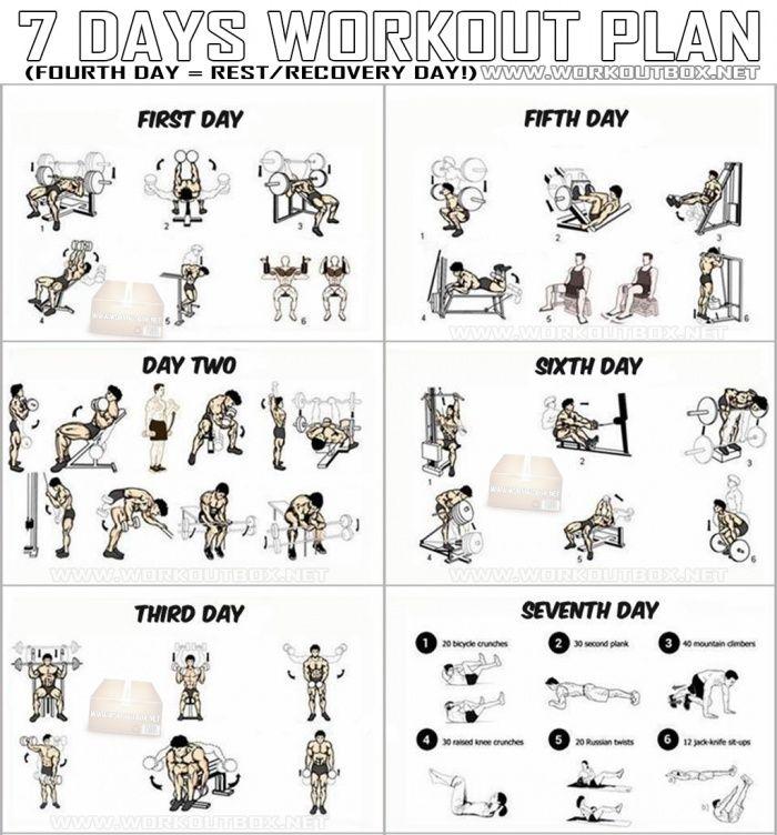7 Days Workout Plan