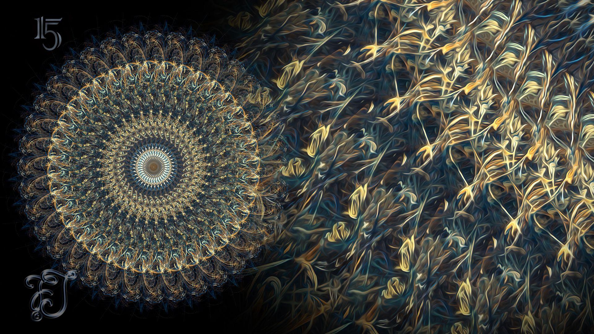 pin von frank jungblut auf mandalas  leinwand papier