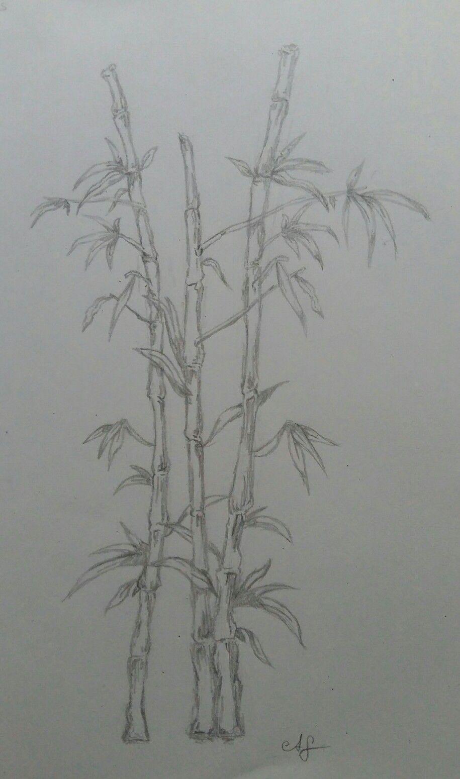 Bambus Vorlage Fur Wandmalerei Meine Zeichnungen Zeichnungen