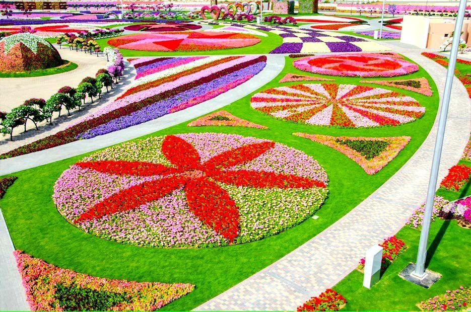 Dubai Miracle Garden Miracle garden, Amazing gardens