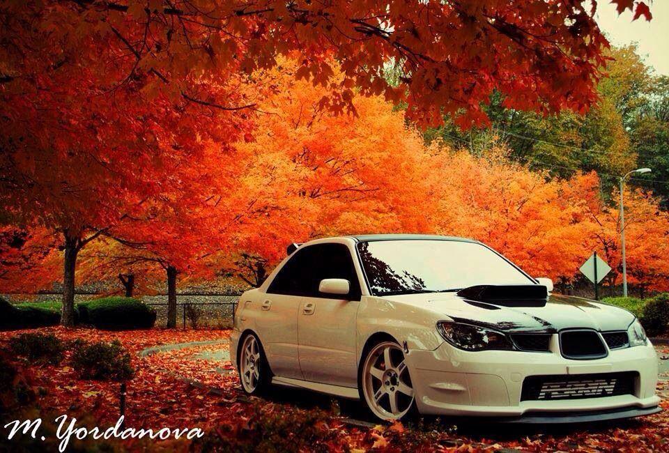 autumn subaru subaru cars subaru impreza subaru pinterest