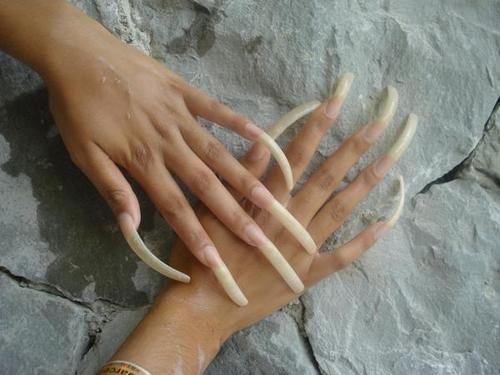 Gorgeous Long Natural Nails Long Natural Nails Long Nails Curved Nails