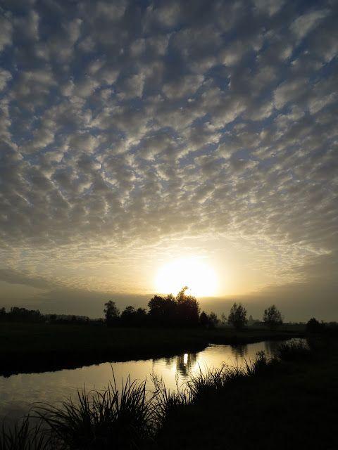 22-10-2012 - 100903106889959017428 - Picasa Web Albums
