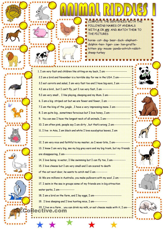 animal riddles pz pinterest animal riddles riddles a english lessons. Black Bedroom Furniture Sets. Home Design Ideas