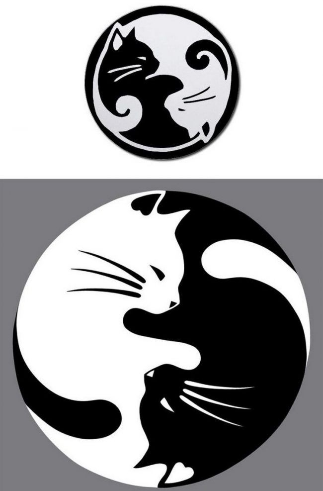 katzen tattoo ideen vorlage yin yang weisse schwarze katze. Black Bedroom Furniture Sets. Home Design Ideas