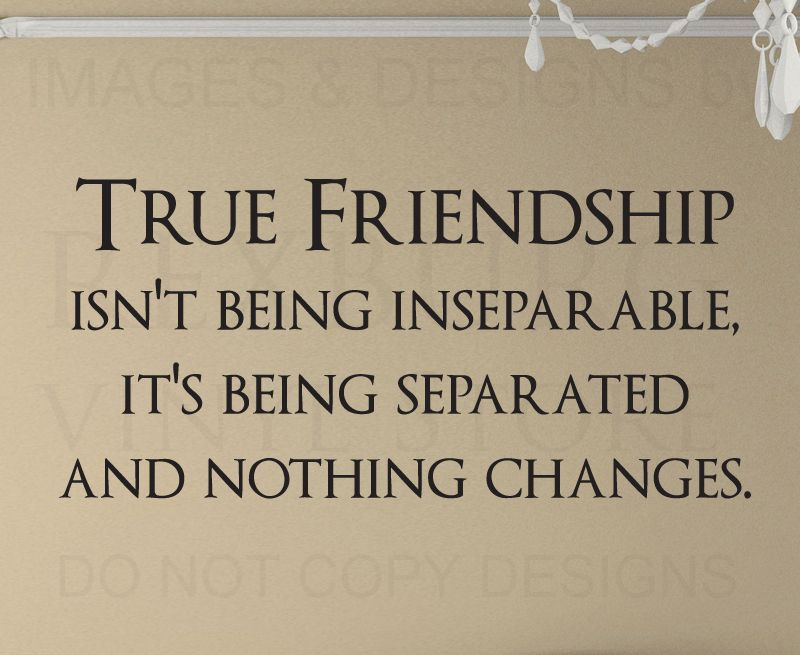 Wall Quote Decal Sticker Vinyl Friendship isn't being Inseparable