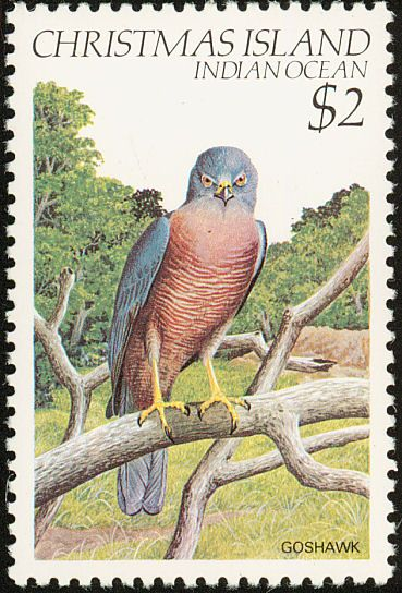 Brown Goshawk stamps - mainly images - gallery format