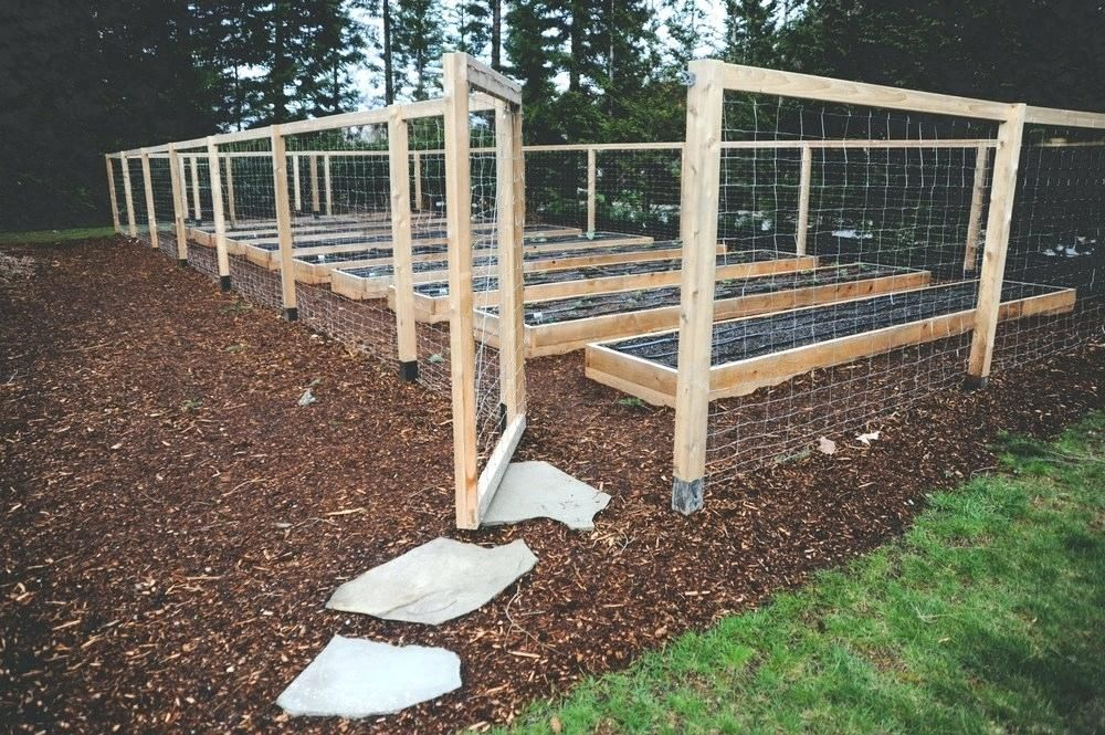 Raised Bed Fence Raised Bed Perennial Garden With Deer Fence Diy