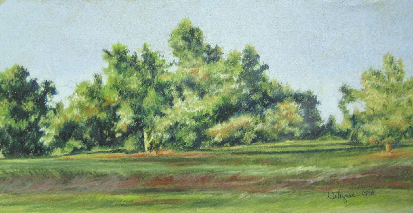 Original colored pencil landscape painting Tree Line. $95.00, via ...