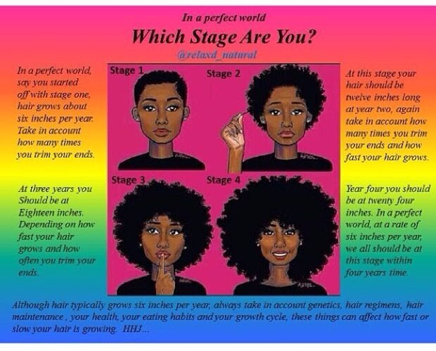 Stages Of Natural Hair Growth With Images Super Hair Growth