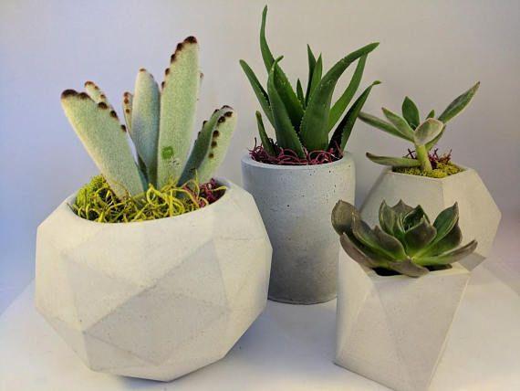 Geometric Concrete Succulent Planter