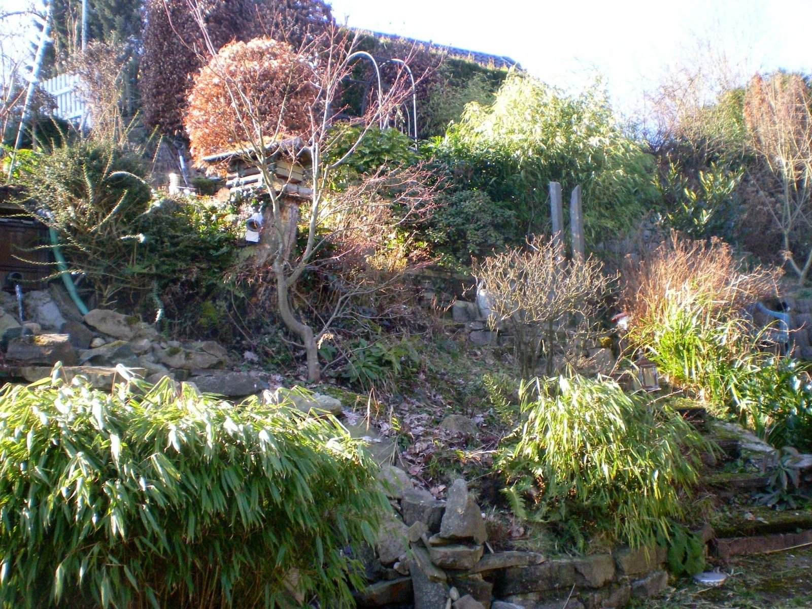 Gartenwahn In Schraglage Fruhhhhhhling Fruhlingsgarten Garten Garten Am Hang