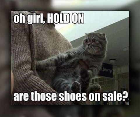 Oh girl, hold on. Are those shoes on sale? #FridayFunny #EdenMeanderLifestyleCentre