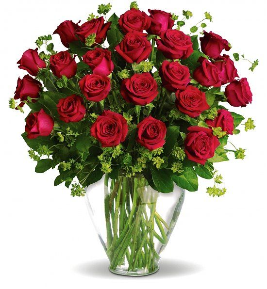 Touch Questa Immagine Valentine S Day One Hundred Red Roses For Her Or Him By Consegna Fiori A Domicilio 11 Anniversary Flowers Red Roses Bunch Of Red Roses
