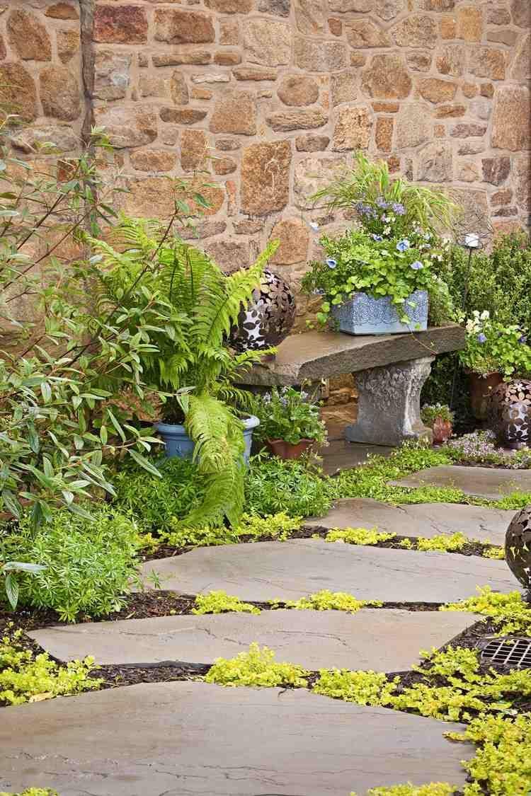 aménagement allée de jardin - types et idées intéressants | création